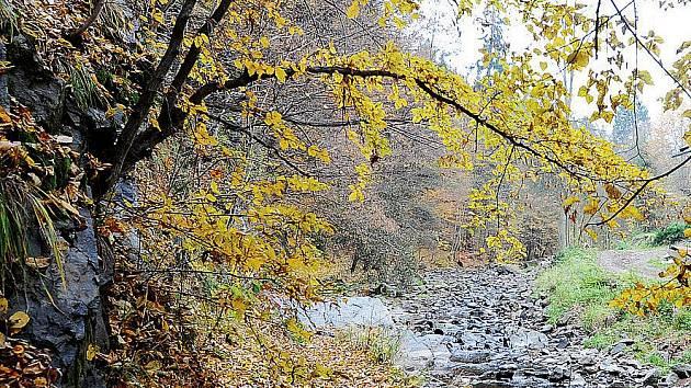 Skalnaté údolí Šilinkova dolu na řece Krounce.