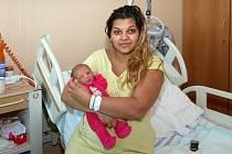 Chrudimská porodnice zaznamenala nový rekord.