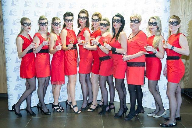 Benefiční ples 2017 uspořádal v Hlinsku  za podpory místních podnikatelů a živnostníků spolek PROVAS Hlinsko. Ten pomáhá lidem se zdravotním a duševním onemocněním.