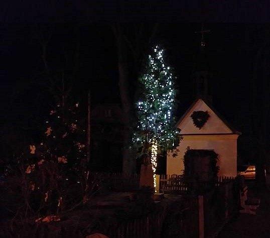 Vánoční strom vDolním Babákově