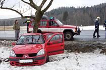 Vozidlo Renault Thalia narazilo ve Františkách do stromu, spolujezdkyně byla zraněna.