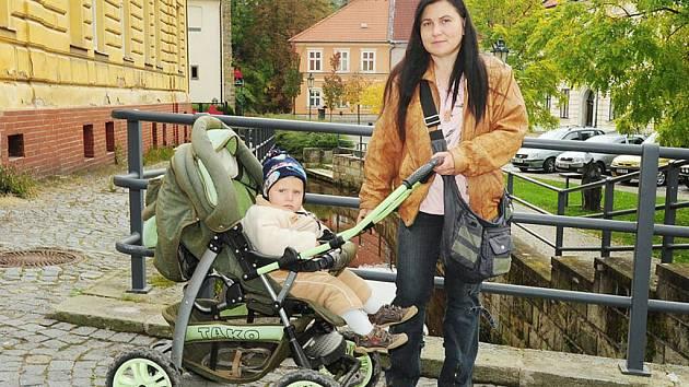 Jaroslava Zachová z obce Kočí shání pomoc pro svého syna Denise.