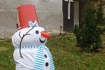 Sněhulák z Rabštejnské Lhoty.