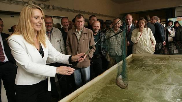 NA KVALITU SUROVÉ VODY budou dohlížet pstruzi, které hlinecká starostka Magda Křivanová vypustila do přítokové nádrže.