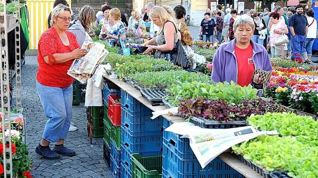 Středeční trhy na Resselově náměstí.