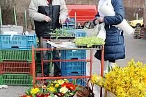 OBLÍBENÉ Rosické trhy se konaly v sobotu letos teprve podruhé a dlužno říci, že prodejní plocha zatím ještě není prodejci ze sta procent obsazena.