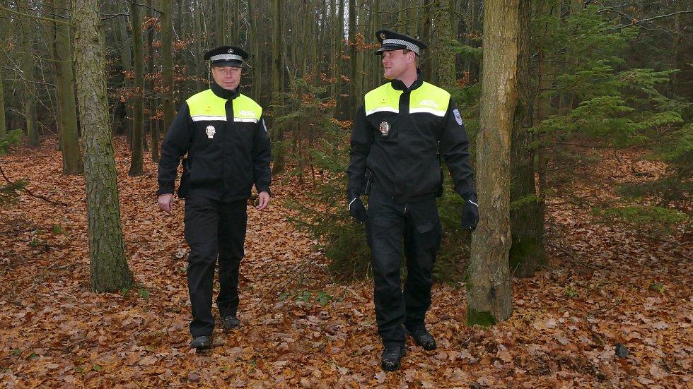 Strážníci hlídkují i v lese