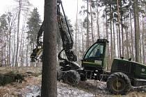 V současných mrazech ani několikatunový stroj nepoškodí lesní cesty.