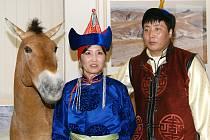 POSLEDNÍ DIVOKÝ KŮŇ. Výstava s tímto názvem byla připravena v chrudimském muzeu k 50. výročí návratu koně Převalského do volné přírody. Pro páteční návštěvníky  byla zajímavá stavba jurty, mongolská lidová hudba i filmy s tématikou koně Převalského.
