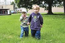 Děti v trávníku na chrudimském sídlišti U Stadionu