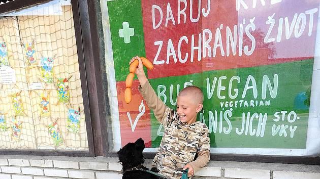 Pes Rony devítiletého prosečského chlapce Lukáše Choutky vůni špekáčků těžko odolává.