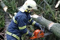 I v Sobětuchách museli hasiči likvidovat spadlý strom.