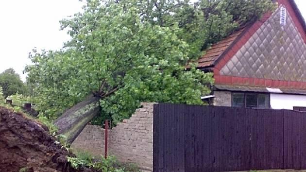 Smršti neodolaly ani mnohé statné stromy.
