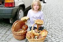 Eliška Spudilová s velmi podařeným houbařským úlovkem.