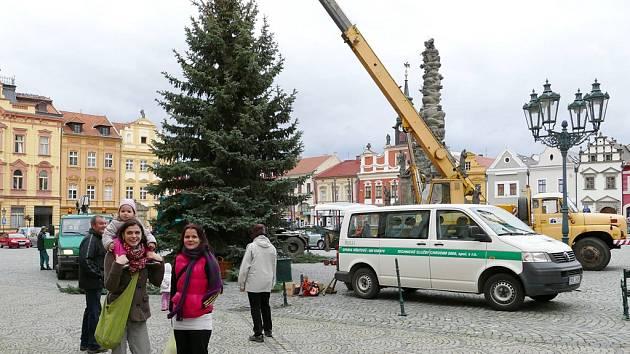 Vánoční strom Na Resselově náměstí, ilustrační snímek.
