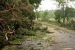 Spoušť napáchala bouře i v lese u Rabštejnské Lhoty. Zbylo z něj jen torzo.