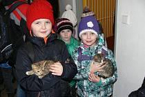 Žáci z prvního stupně Základní školy Školní náměstí navštívili chrudimský útulek pro opuštěné psy a kočky v Sečské ulici