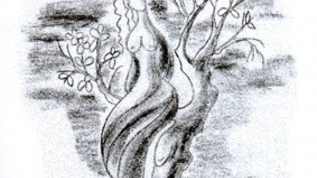 Ilustrace do knihy jsou dílem autorova přítele Jiřího Šimka.