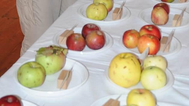 Mezi vystavovaným ovocem v Nasavrkách nechyběly ani různé odrůdy jablek.