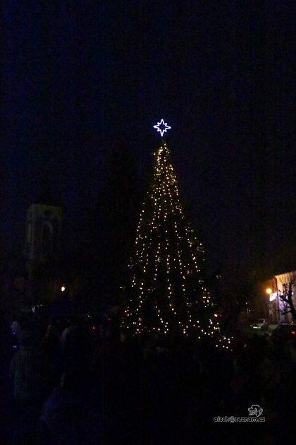 Vánoční strom vProseči