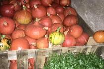 Na farmě v Částkově bude v sobotu zahradní slavnost
