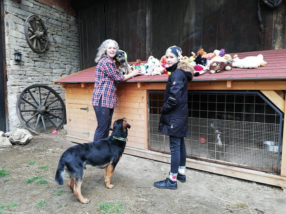 Děti věnovaly opuštěným psům své plyšáky