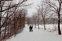 Sníh láká do přírody - na běžky i se sáňkami na kopec.