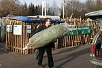Před chrudimskými supermarkety už začal prodej vánočních stromků.
