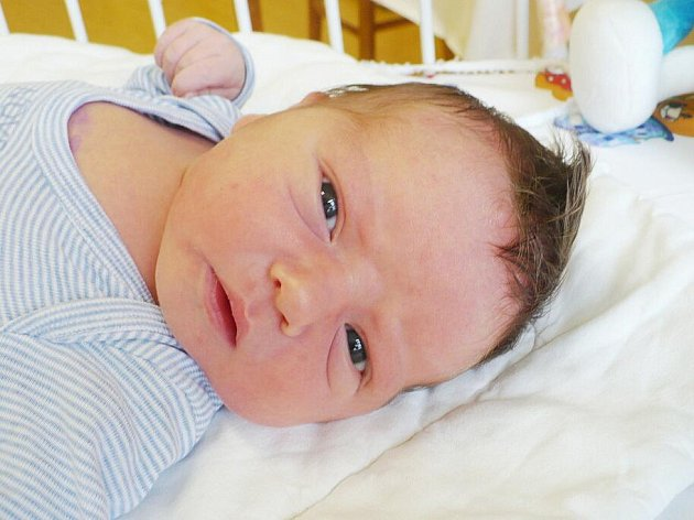 DAVID BERAN. Pohled má od 19. září od 21:10 nového občánka. Narodil se rodičům Haně a Lubošovi s mírami 3,95 kg a 53 cm.