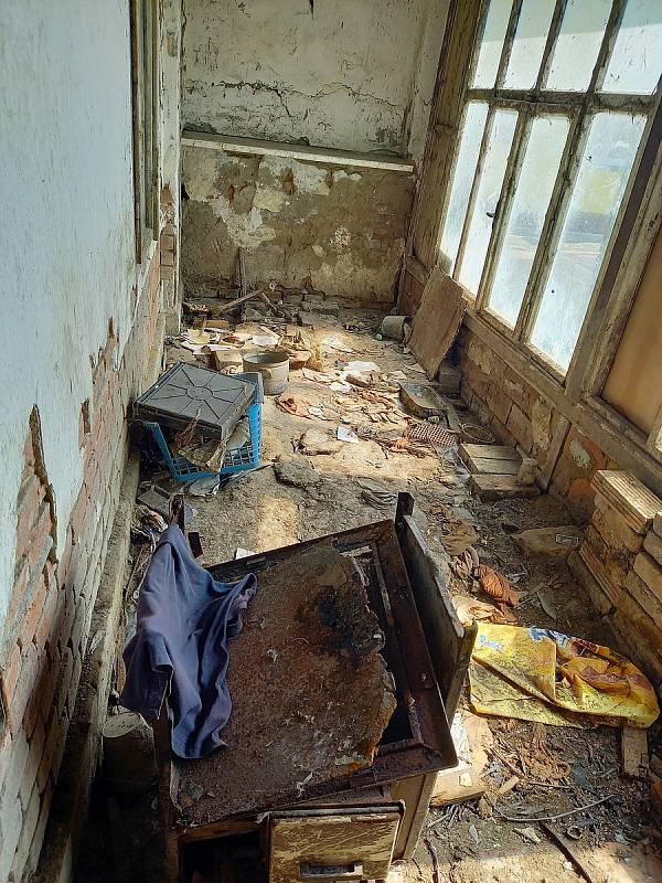 Zde žily a množily se desítky psů bez jakékoliv veterinární péče. Zachránit se jich podařilo deset.