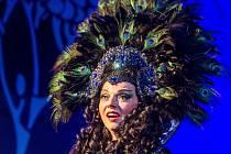 Skutečský festival uvede operu Kouzelná flétna