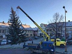 Na náměstí v Luži už instalovali vánoční strom.