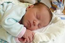 KAROLÍNKA KRUSCHINOVÁ je po 5letém Davidovi jméno druhého děťátka Jany a Jiřího z Trhové Kamenice. Narodila se 17. listopadu v 6:00 a vážila 3,15 kg, měřila 48 cm.