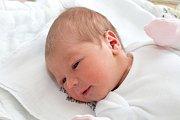 Adéla Kvapilová (3,31 kg a 52 cm). Dne 14.4. ve 14:39 se Michaela a Martin ze Slatiňan stali poprvé rodiči.