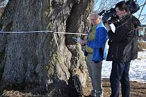 """""""Lovec stromů"""" Rob McBride"""