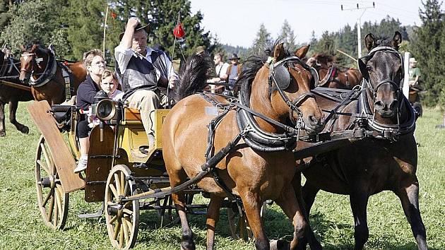 Setkání chovatelů a přátel koní v Hamrech u Hlinska.