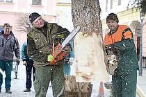 Zaměstnanci Technických služeb Chrudim při osazování vánočního stromu na Resselově náměstí.