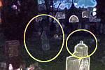 Snímky z chrudimského hřbitova U Václava.