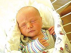 HONZÍK CERAL se narodil Haně a Janovi ze Skutče 16.2. v 15:23 s váhou 3,64 kg a mírou 52 cm.