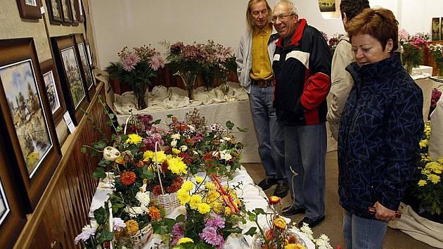 Hlinecká chryzantéma.
