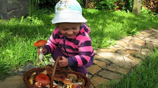 HOUBAŘOVA vnučka Eliška v košíku objevila holubinky jahodové, křemenáče borové, lišky obecné i muchomůrky růžovky.