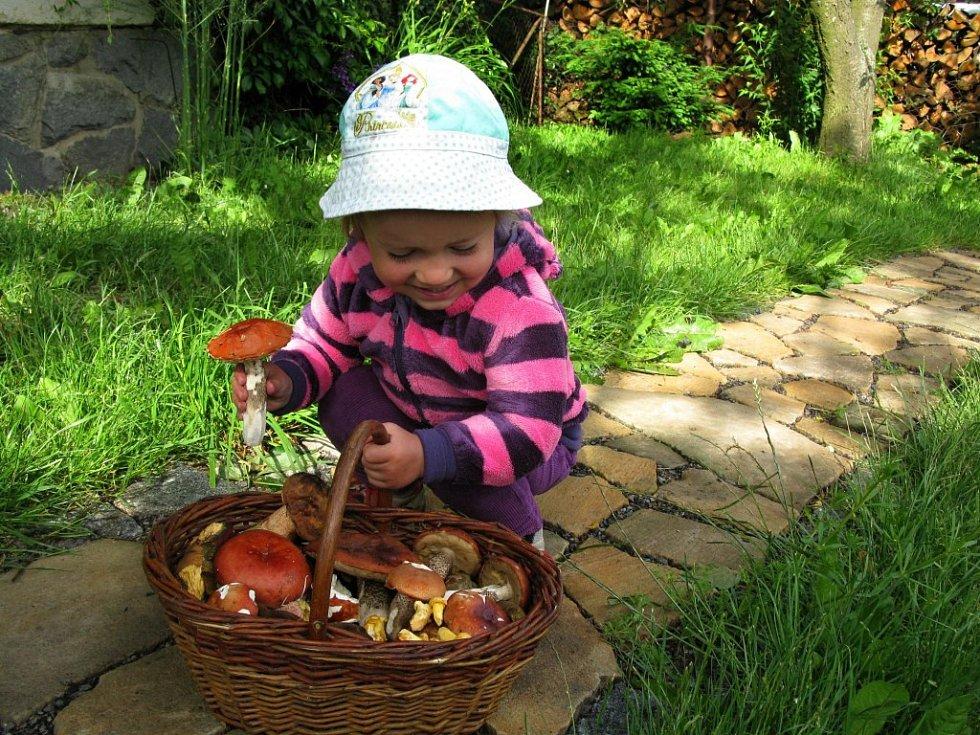HOUBAŘOVA vnučka Eliška v košíku objevila holubinky jahodové d77ffa4c5f