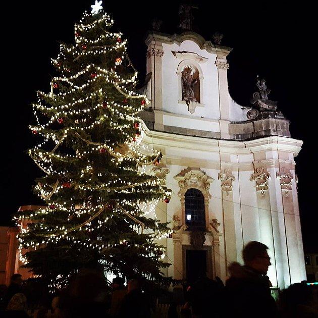 Vánoční strom vHeřmanově Městci