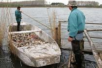 Rybářům se naskytl smutný pohled na mrtvé ryby.