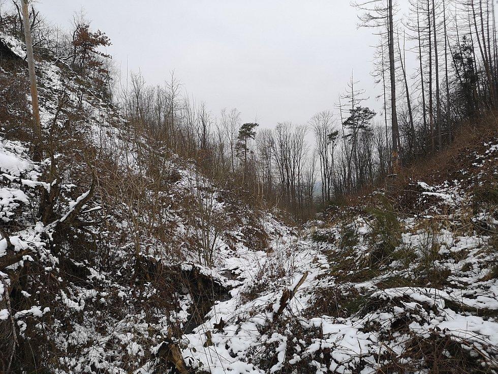 Trojmezí podhořanské - Bumbalecký potok protékající strží.