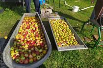 """Zpracování jablek je těžká a """"špinavá"""" práce, ale společně jde všechno snadněji."""