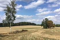 Stará kupecká cesta z Hlinska do Studnic bude obnovena.