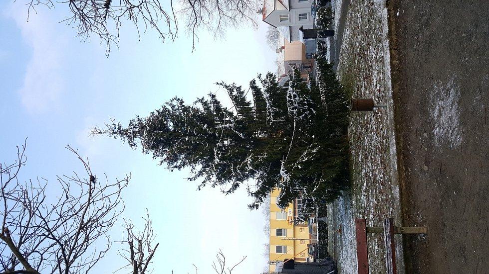 Vánoční jarmark v Seči.