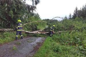 Bouřka 9. července způsobila rozsáhlé polomy