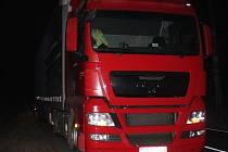 Srážka nákladního automobilu s lesní zvěří.